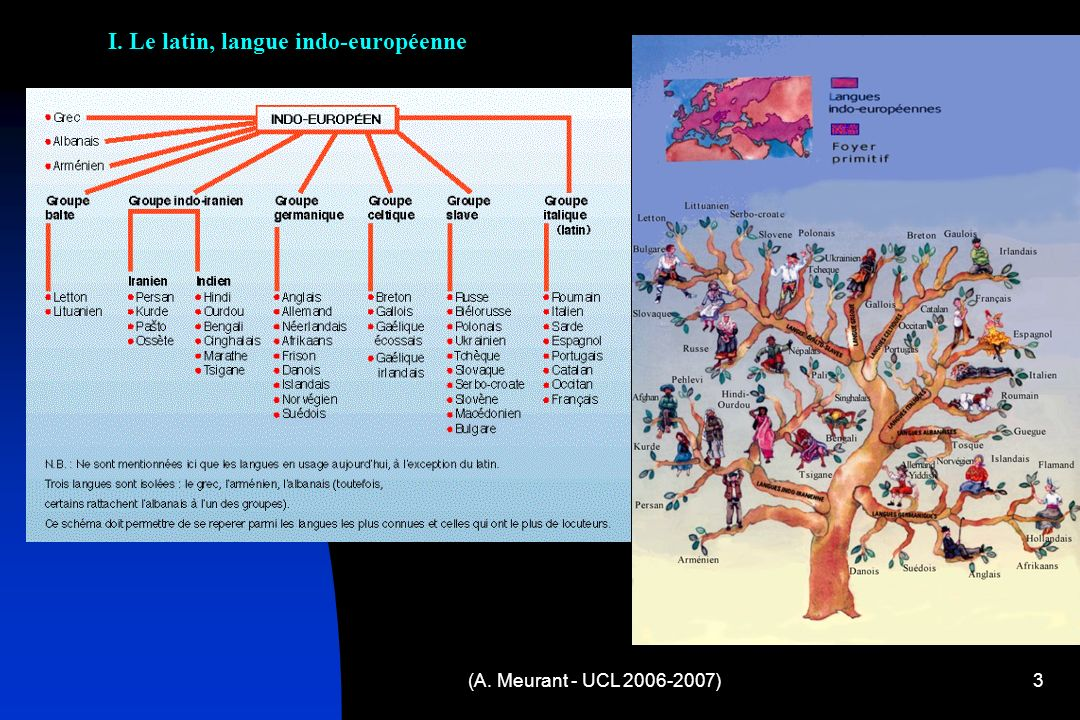 I. Le latin, langue indo-européenne