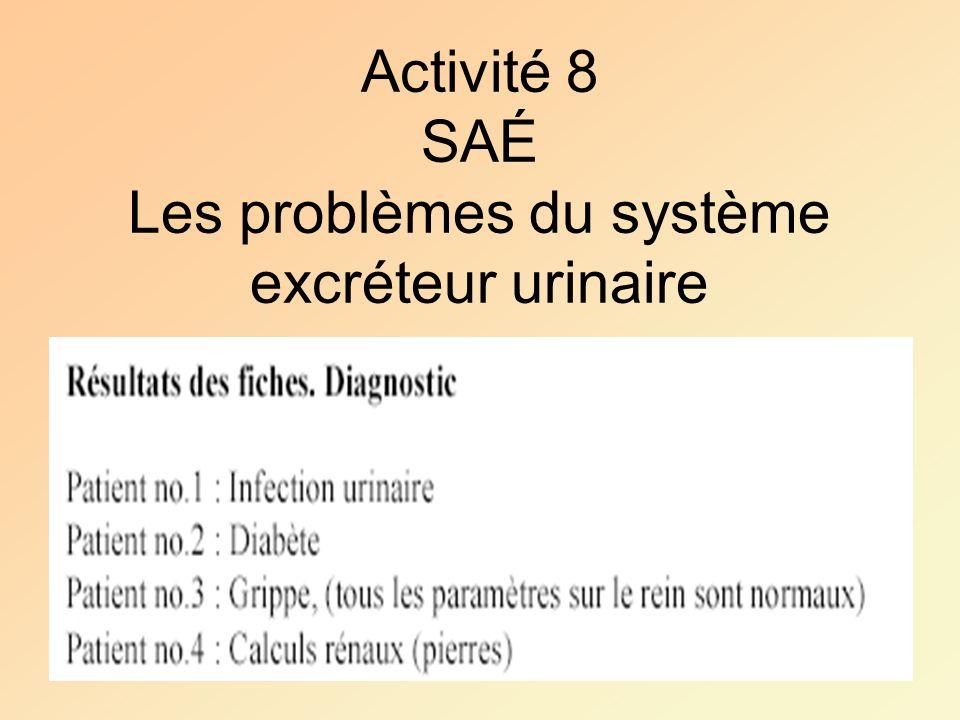 Activité 8 SAÉ Les problèmes du système excréteur urinaire