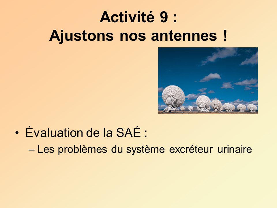 Activité 9 : Ajustons nos antennes !