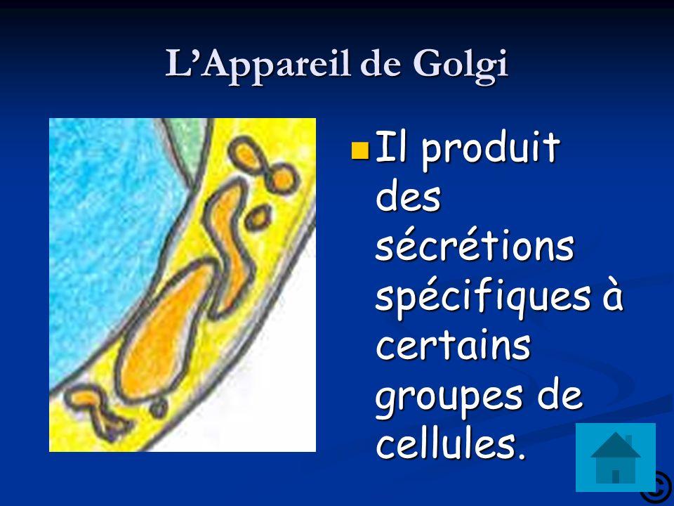 L'Appareil de Golgi Il produit des sécrétions spécifiques à certains groupes de cellules.