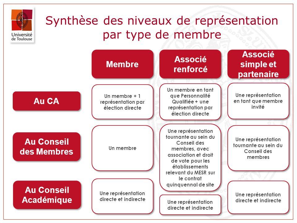Synthèse des niveaux de représentation par type de membre