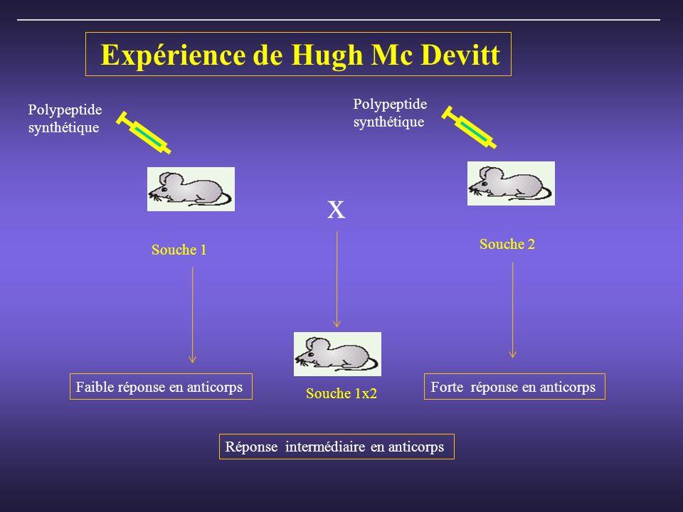 x Expérience de Hugh Mc Devitt Polypeptide synthétique Polypeptide