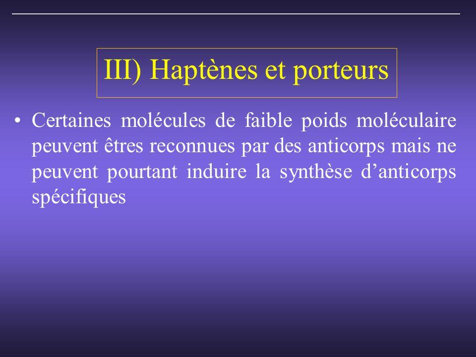 III) Haptènes et porteurs