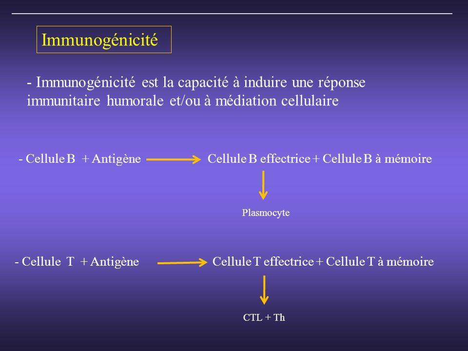 Immunogénicité - Immunogénicité est la capacité à induire une réponse