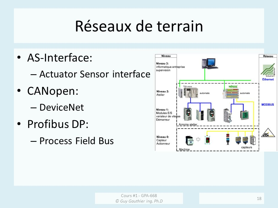 Réseaux de terrain AS-Interface: CANopen: Profibus DP: