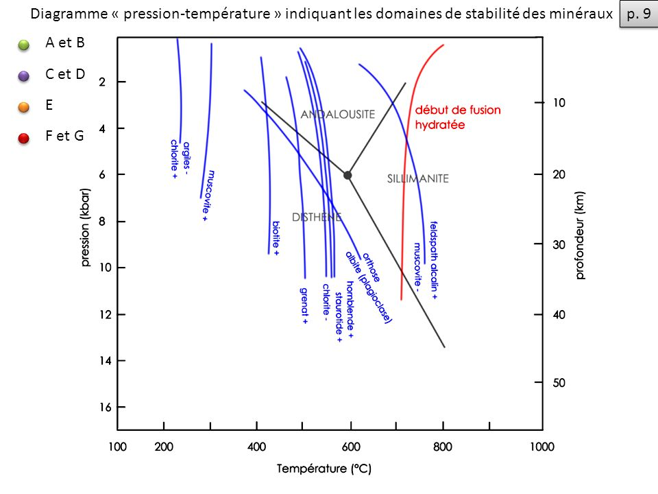 Diagramme « pression-température » indiquant les domaines de stabilité des minéraux