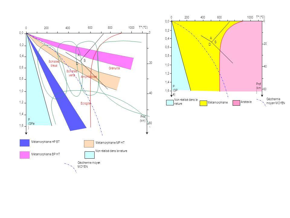 A S D A S D Non réalisé dans la nature Métamorphisme 200 400 600 1000