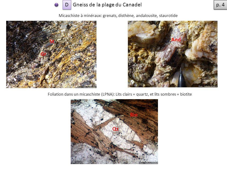Gneiss de la plage du Canadel p. 4