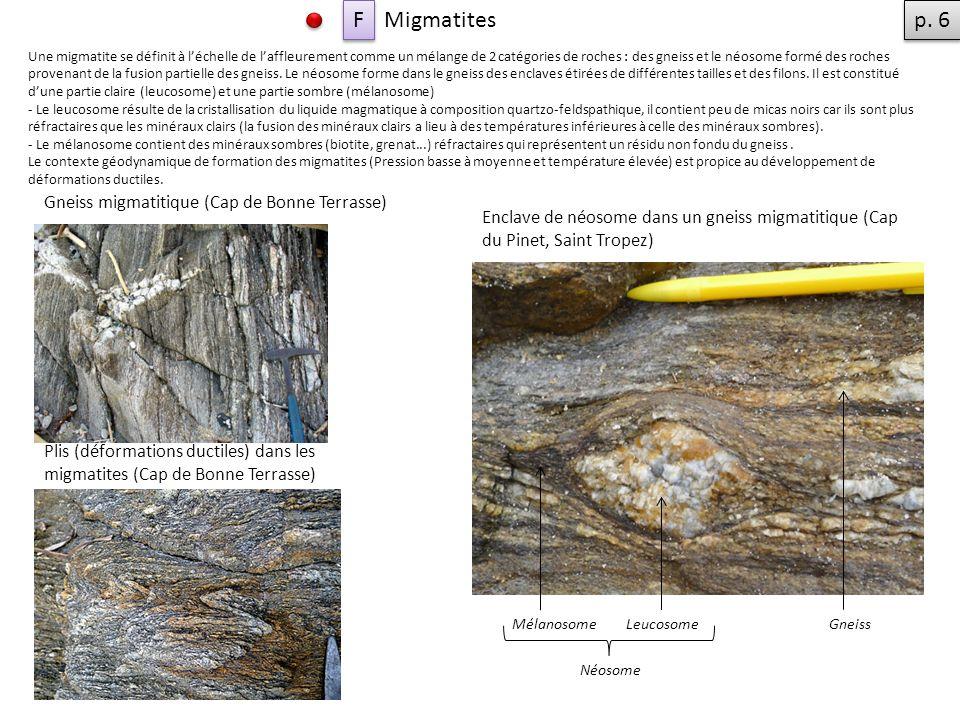 F Migmatites p. 6 Gneiss migmatitique (Cap de Bonne Terrasse)