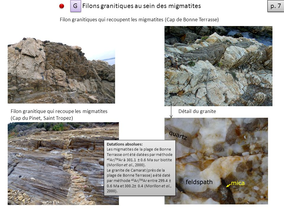 Filons granitiques au sein des migmatites p. 7