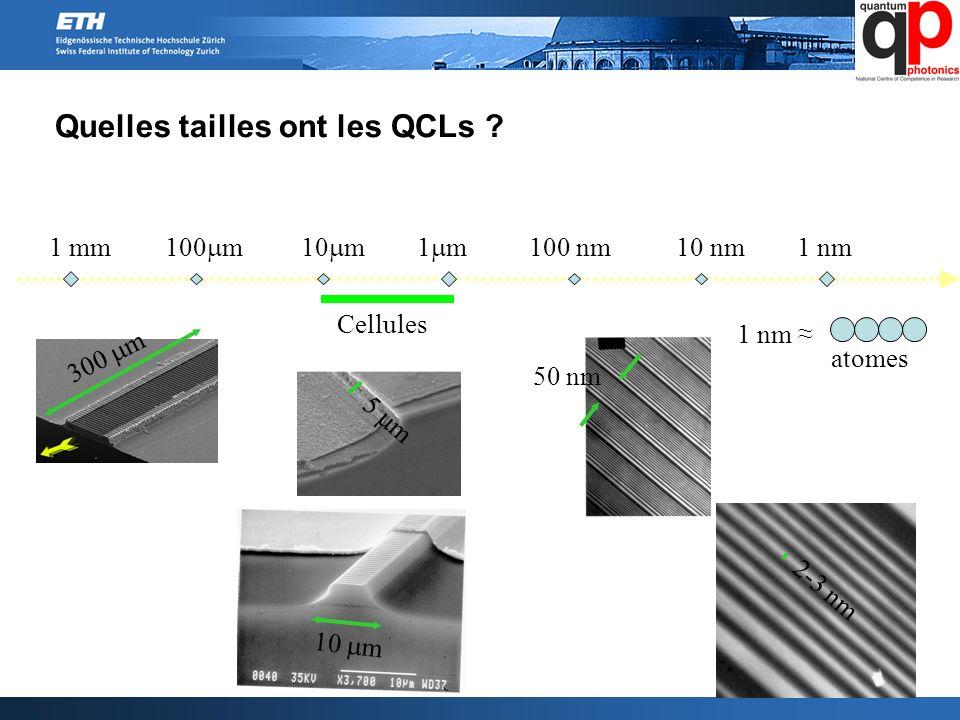 Quelles tailles ont les QCLs