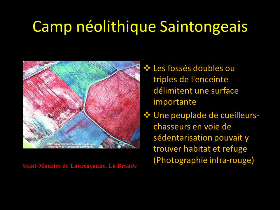 Camp néolithique Saintongeais