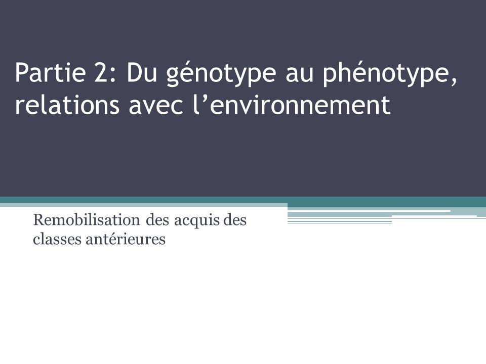 Partie 2: Du génotype au phénotype, relations avec l'environnement