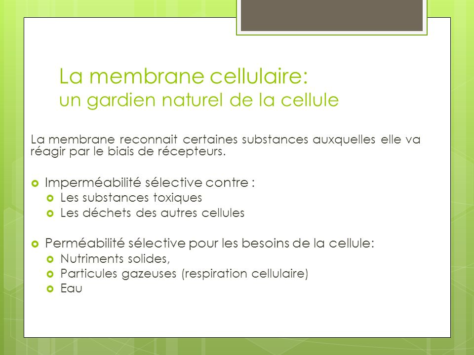 La membrane cellulaire: un gardien naturel de la cellule