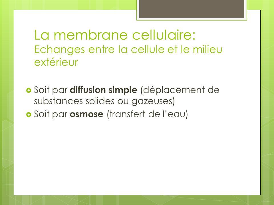 La membrane cellulaire: Echanges entre la cellule et le milieu extérieur