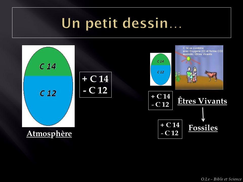 Un petit dessin… + C 14 - C 12 Êtres Vivants Fossiles Atmosphère
