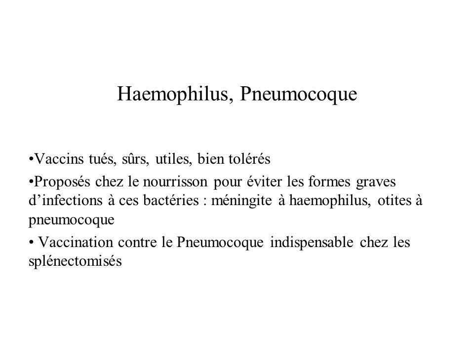 Haemophilus, Pneumocoque