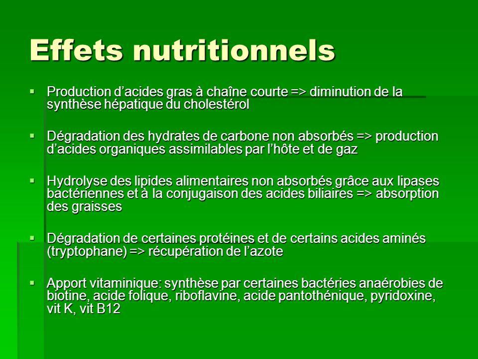 Effets nutritionnels Production d'acides gras à chaîne courte => diminution de la synthèse hépatique du cholestérol.