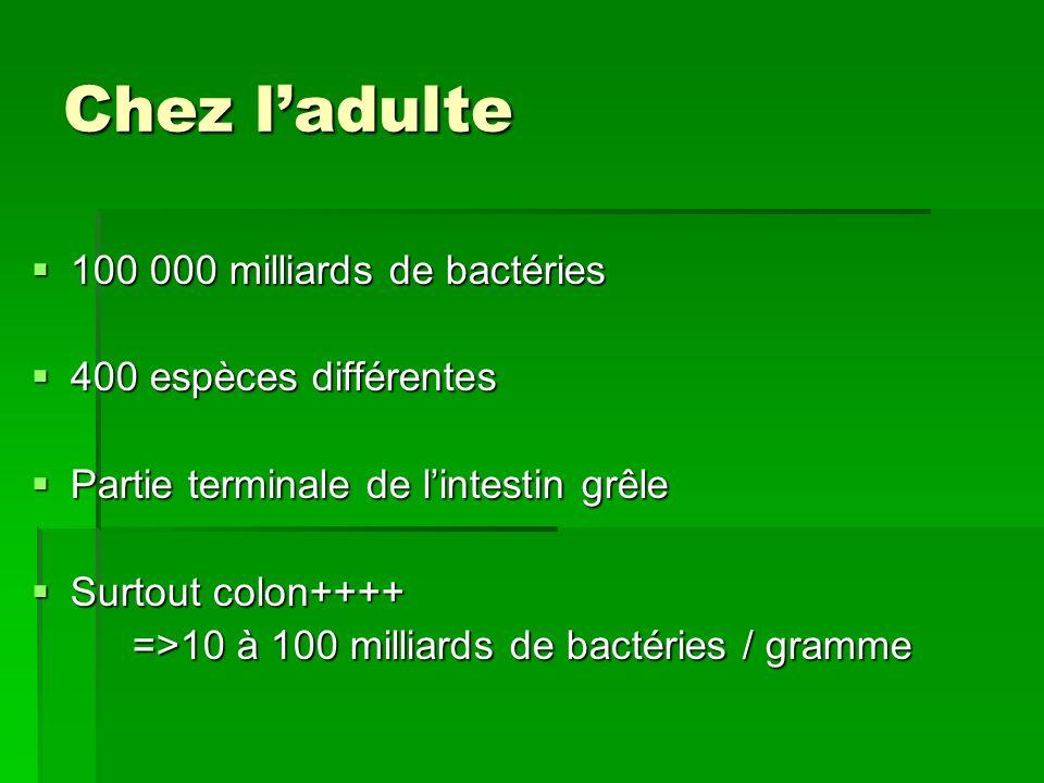 Chez l'adulte 100 000 milliards de bactéries 400 espèces différentes