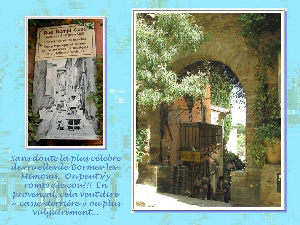 Sans doute la plus célèbre des ruelles de Bormes-les- Mimosas