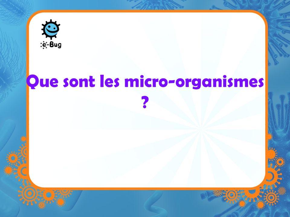 Que sont les micro-organismes