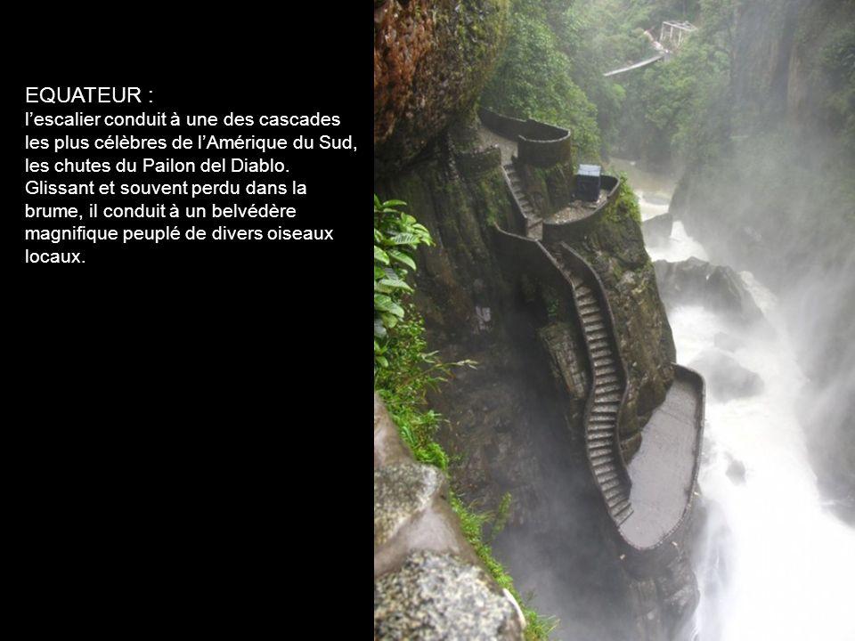 EQUATEUR : l'escalier conduit à une des cascades les plus célèbres de l'Amérique du Sud, les chutes du Pailon del Diablo.