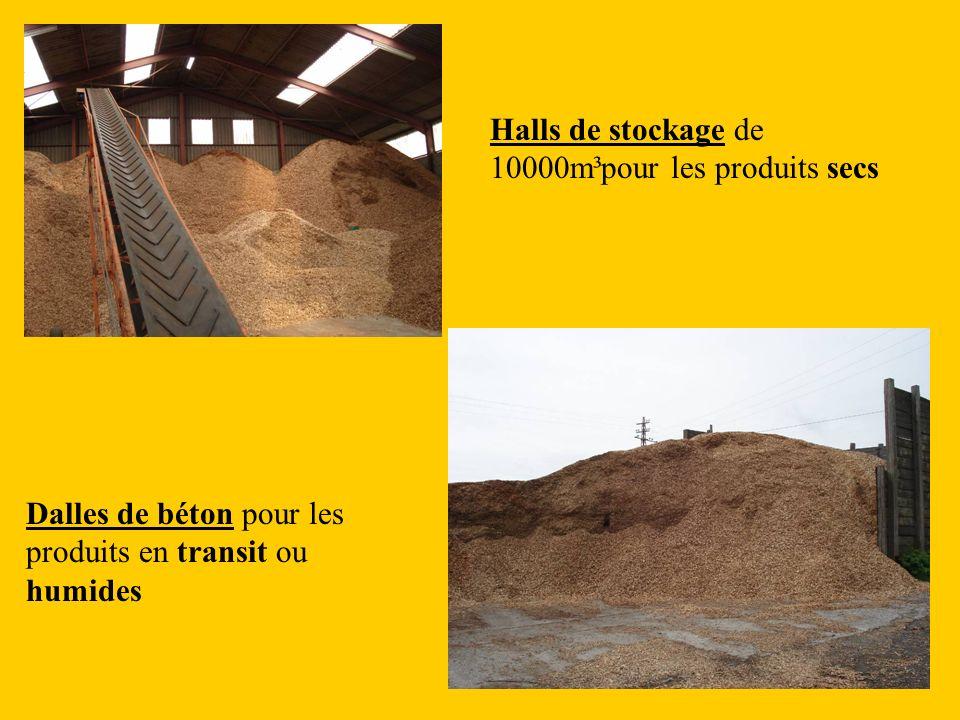 Halls de stockage de 10000m³pour les produits secs