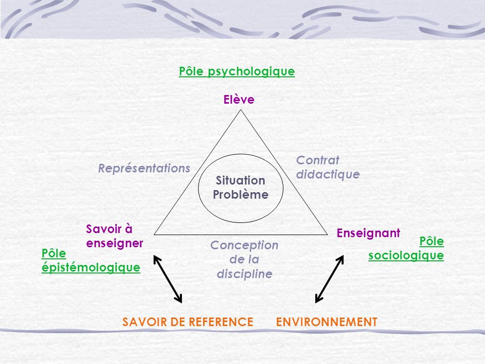 Conception de la discipline