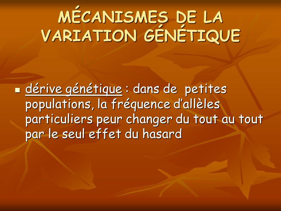 MÉCANISMES DE LA VARIATION GÉNÉTIQUE