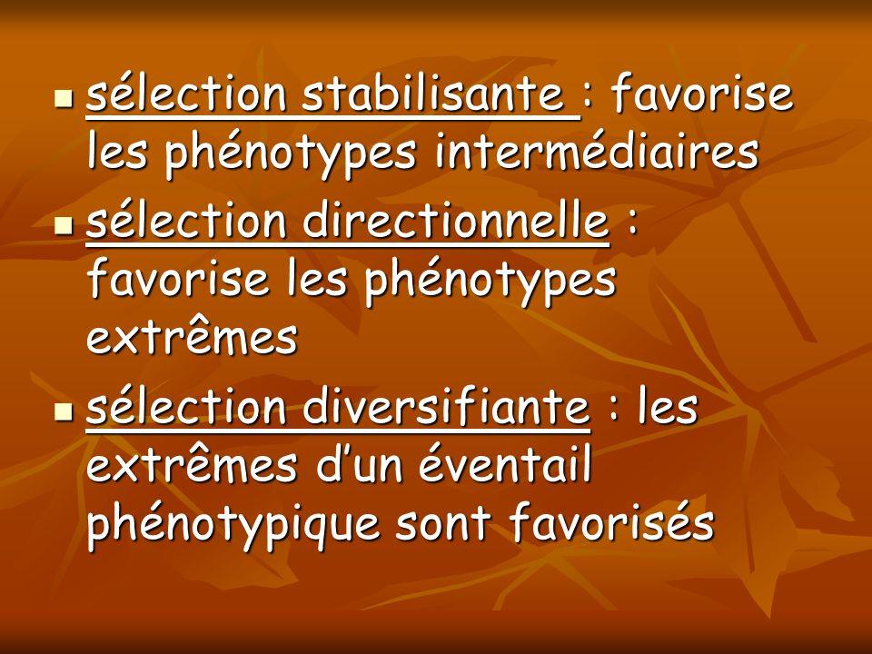 sélection stabilisante : favorise les phénotypes intermédiaires