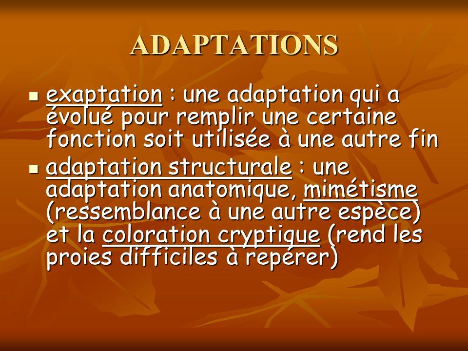 ADAPTATIONS exaptation : une adaptation qui a évolué pour remplir une certaine fonction soit utilisée à une autre fin.