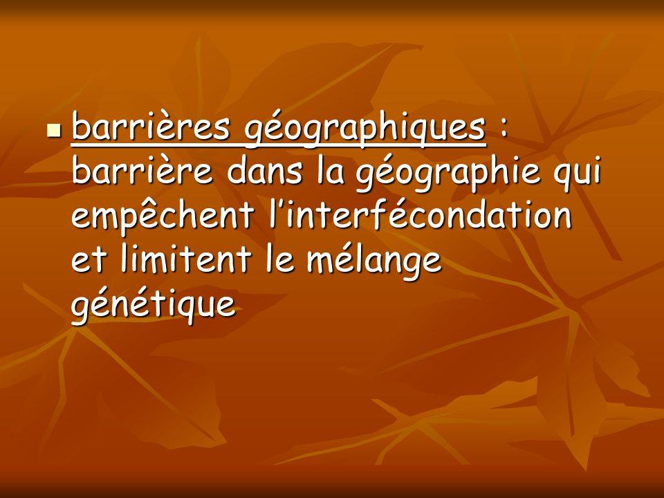 barrières géographiques : barrière dans la géographie qui empêchent l'interfécondation et limitent le mélange génétique