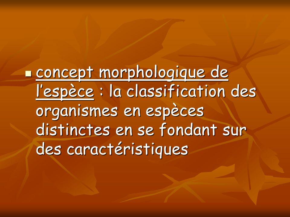 concept morphologique de l'espèce : la classification des organismes en espèces distinctes en se fondant sur des caractéristiques