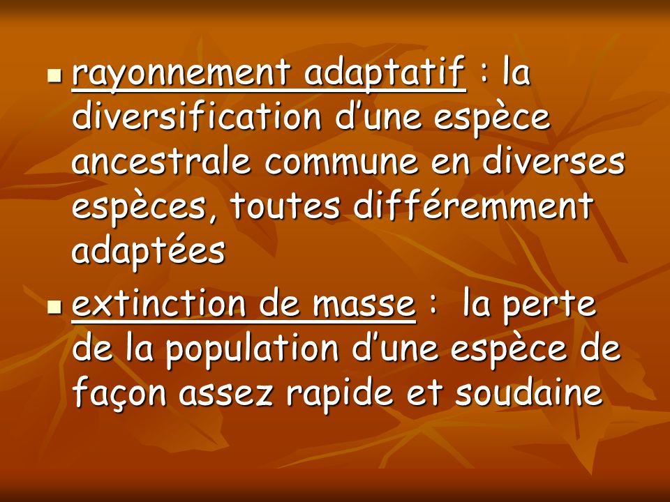 rayonnement adaptatif : la diversification d'une espèce ancestrale commune en diverses espèces, toutes différemment adaptées
