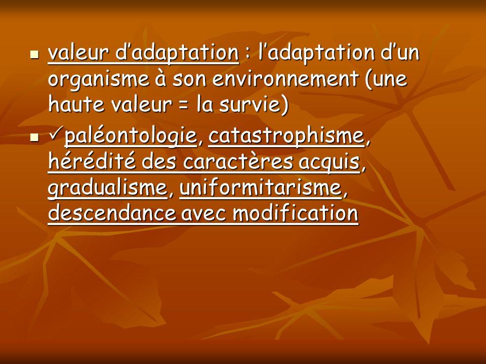 valeur d'adaptation : l'adaptation d'un organisme à son environnement (une haute valeur = la survie)