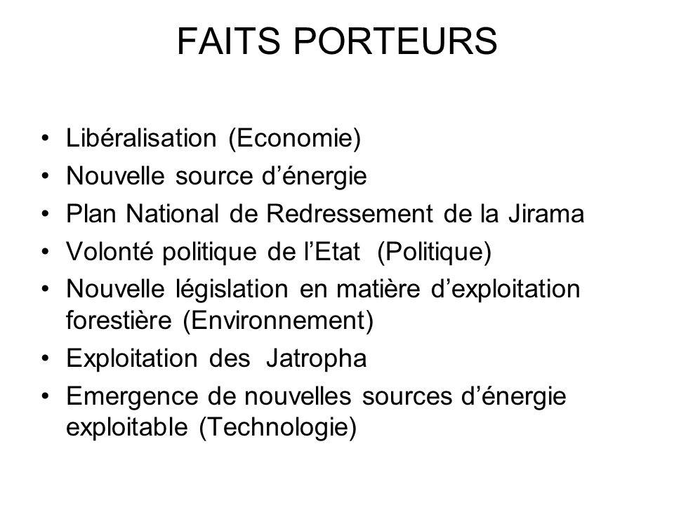 FAITS PORTEURS Libéralisation (Economie) Nouvelle source d'énergie