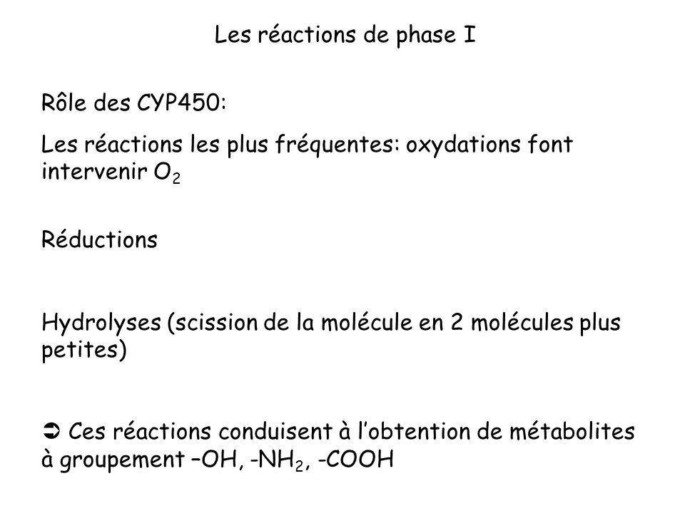 Les réactions de phase I