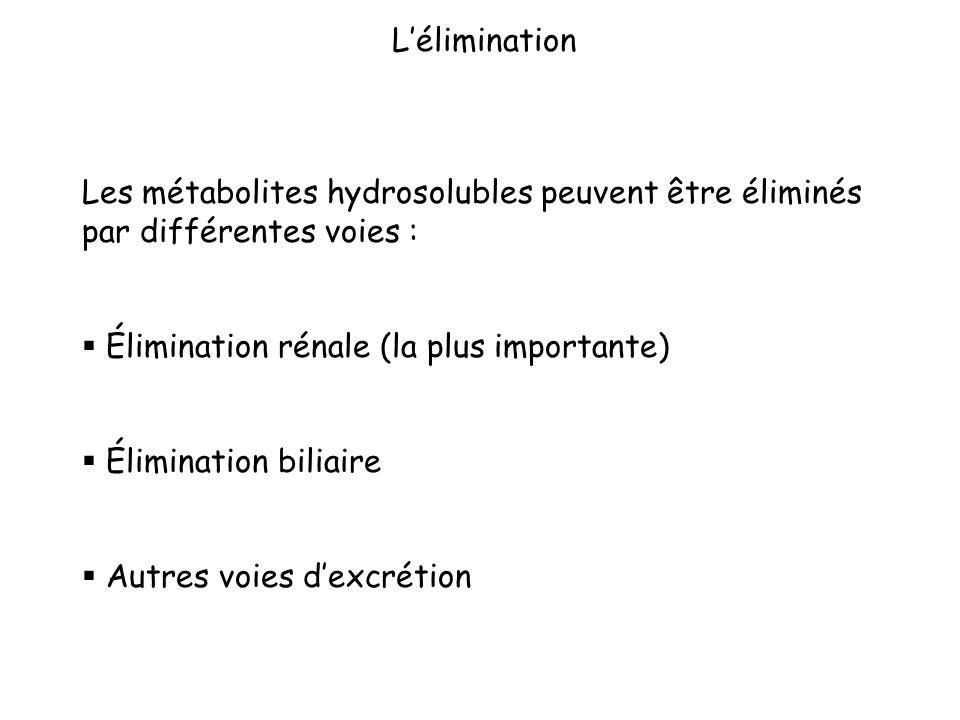 L'élimination Les métabolites hydrosolubles peuvent être éliminés par différentes voies : Élimination rénale (la plus importante)