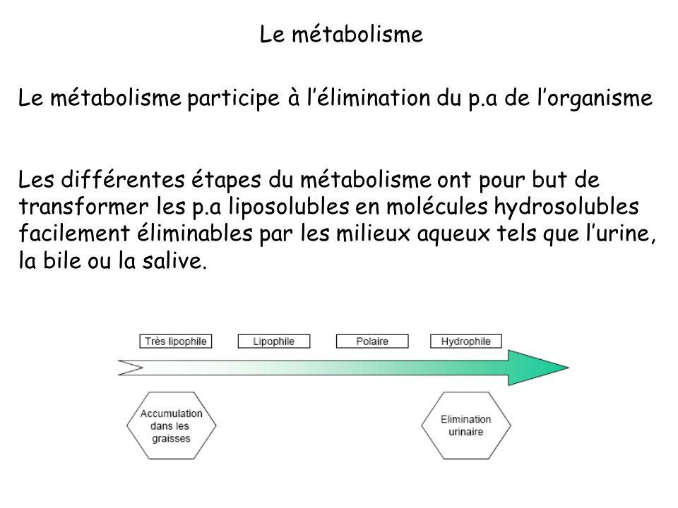 Le métabolisme Le métabolisme participe à l'élimination du p.a de l'organisme.