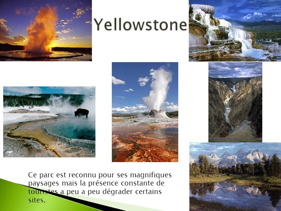 Yellowstone Ce parc est reconnu pour ses magnifiques paysages mais la présence constante de touristes a peu a peu dégrader certains sites.