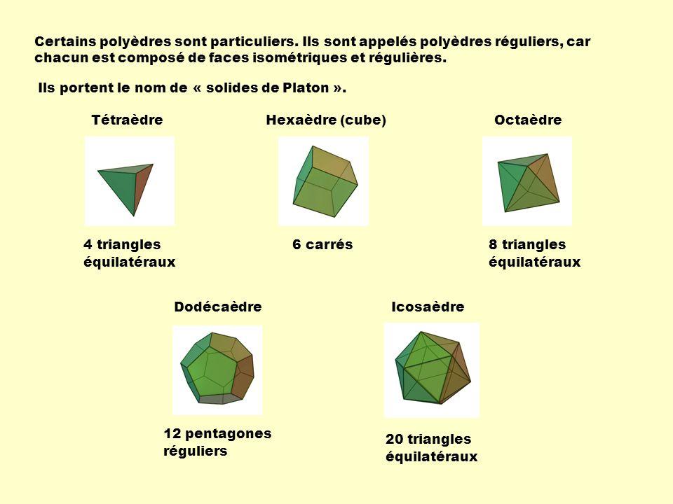 Certains polyèdres sont particuliers
