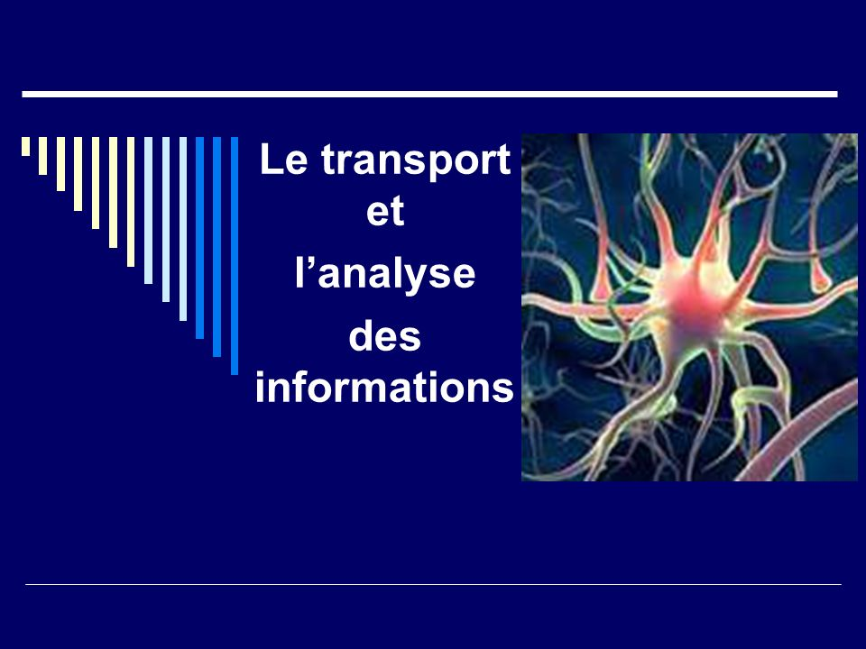 Le transport et l'analyse des informations