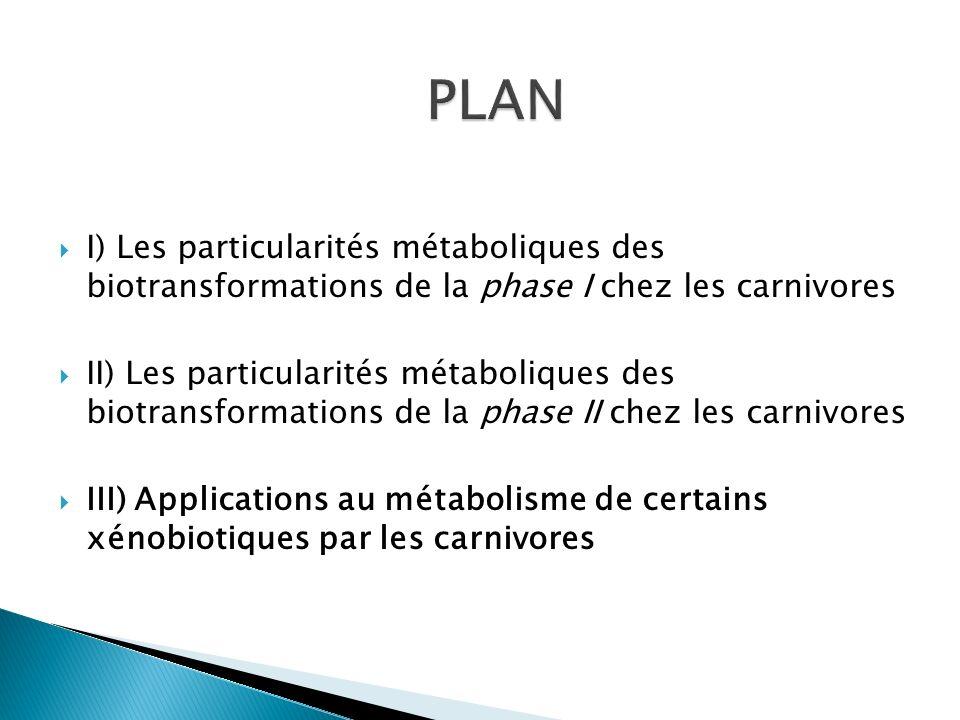 PLAN I) Les particularités métaboliques des biotransformations de la phase I chez les carnivores.