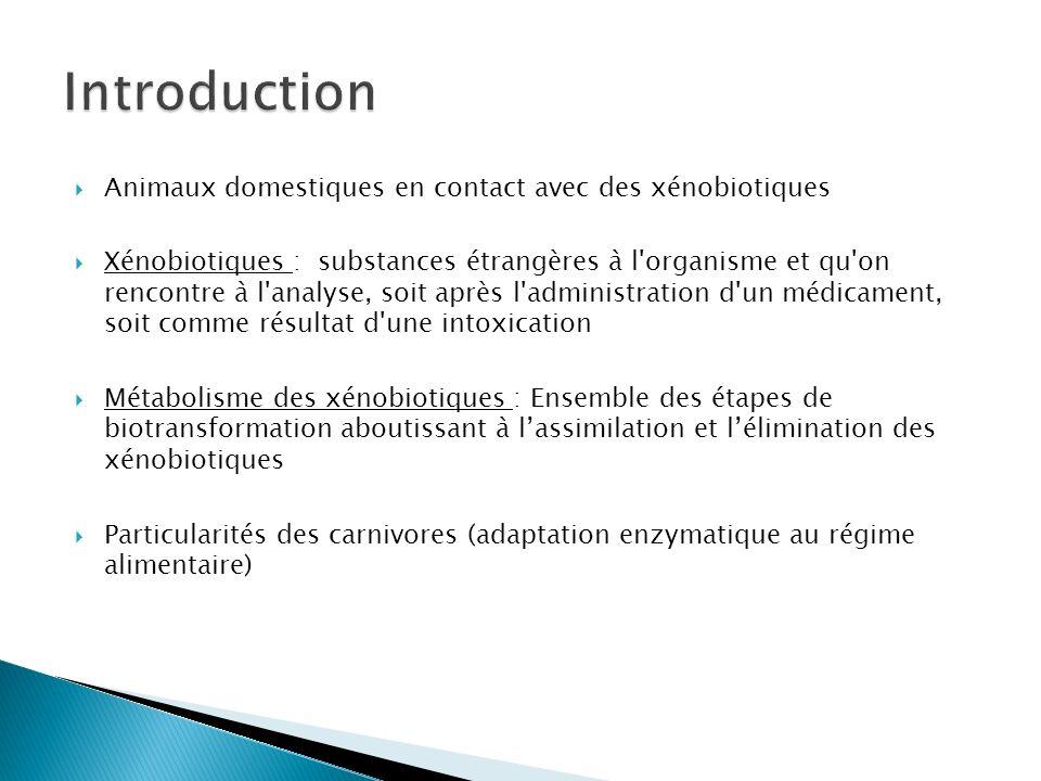 Introduction Animaux domestiques en contact avec des xénobiotiques