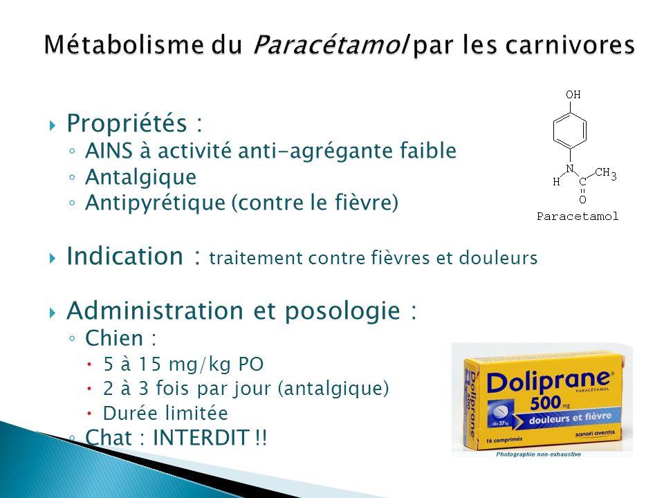 Métabolisme du Paracétamol par les carnivores