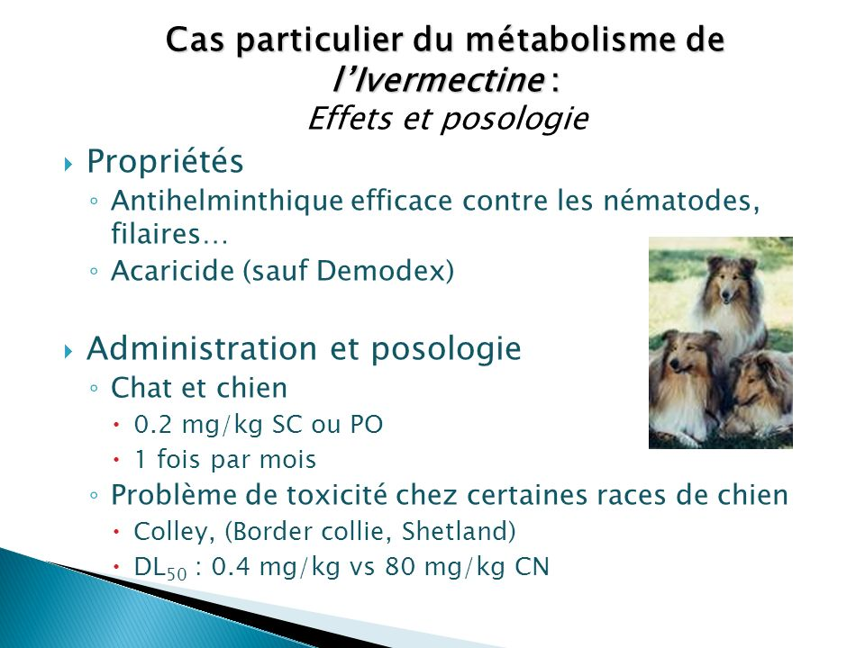 Cas particulier du métabolisme de l'Ivermectine :