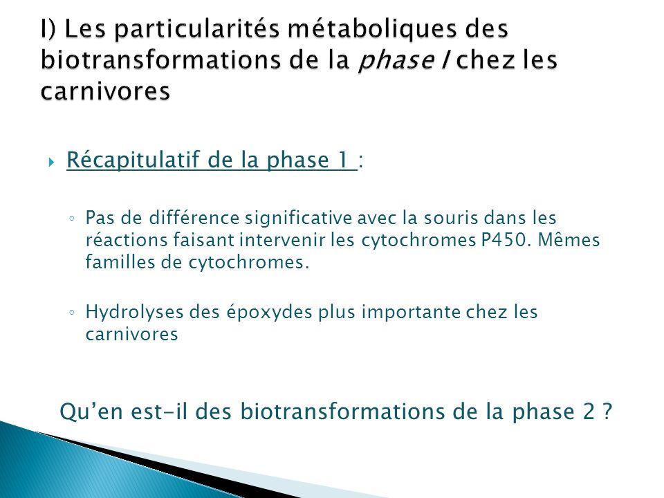 Qu'en est-il des biotransformations de la phase 2