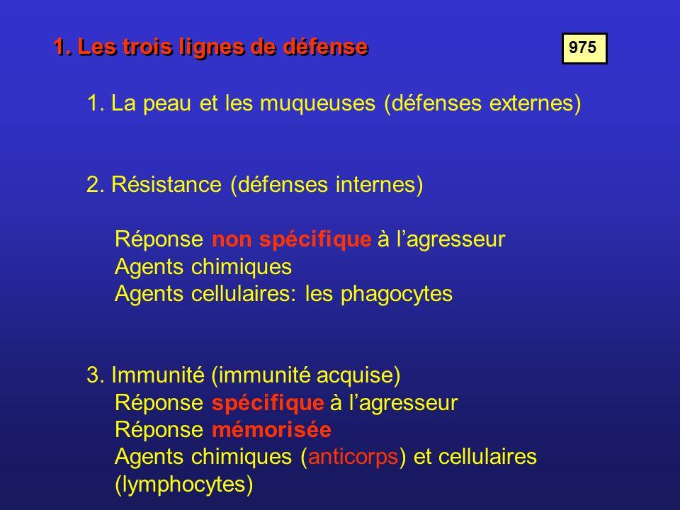 1. Les trois lignes de défense