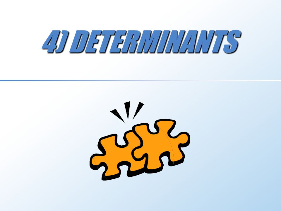 4) DETERMINANTS