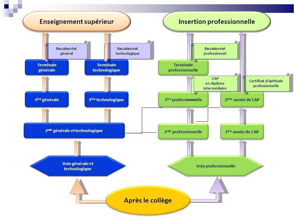 Enseignement supérieur Insertion professionnelle